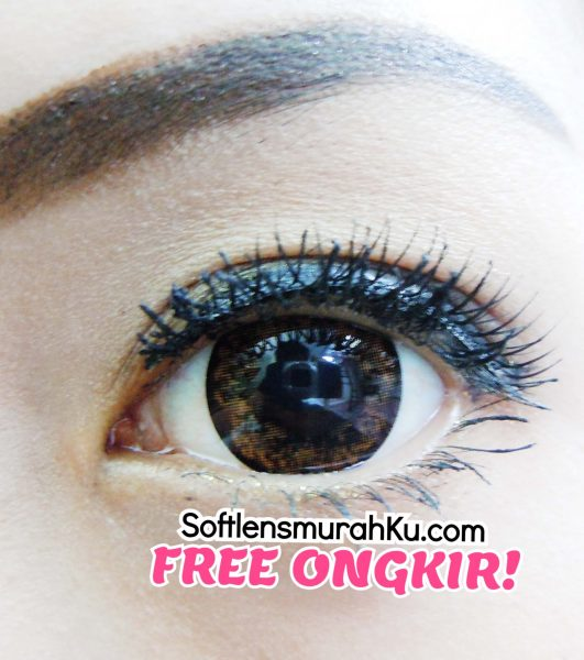 softlens aimu medusa brown