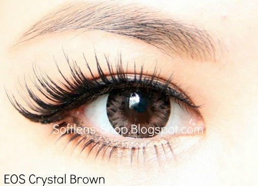 softlens eos crystal brown