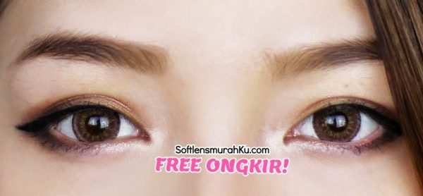 softlens eos briller brown