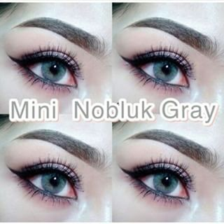 mini nobluk grey softlens