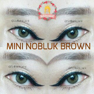 softlens mini nobluk brown