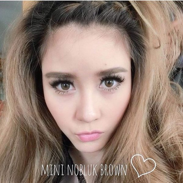 mini nobluk brown softlens