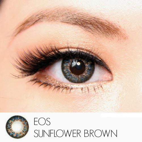 softlens eos sunflower brown
