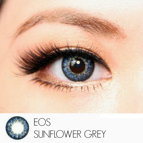 softlens eos sunflower grey