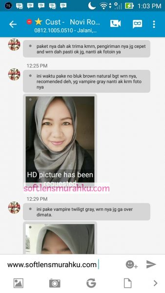 review vampire grey sis novi
