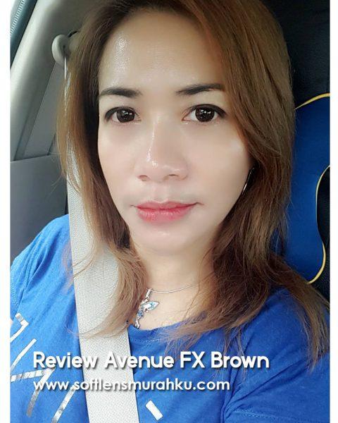 review avenue fx brwon