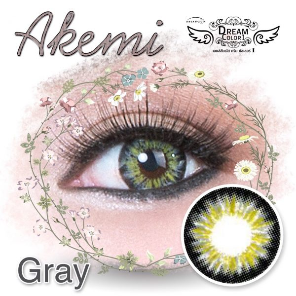 detail dreamcon akemi grey