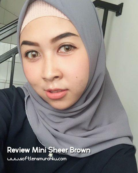 review mini sheer brown