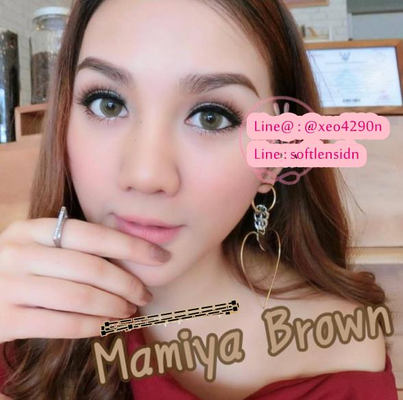 softlens mamiya brown