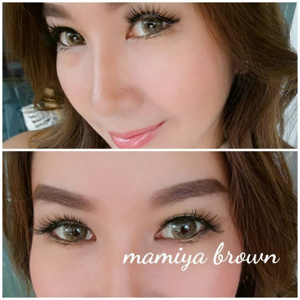 softlens dreamcon mamiya brown