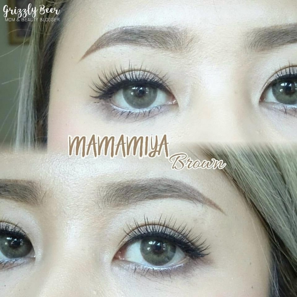 softlens mamiya brown dreamcolor
