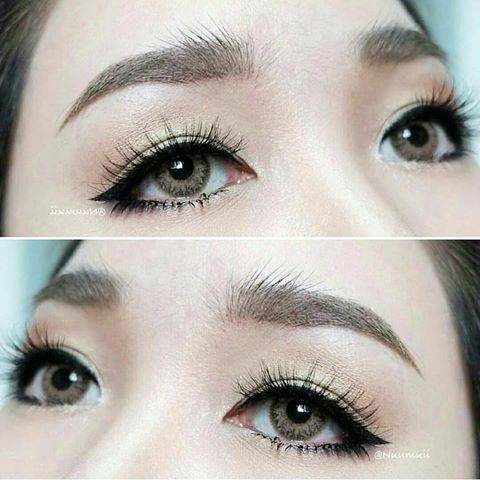 softlens eos moonlit brown lamune