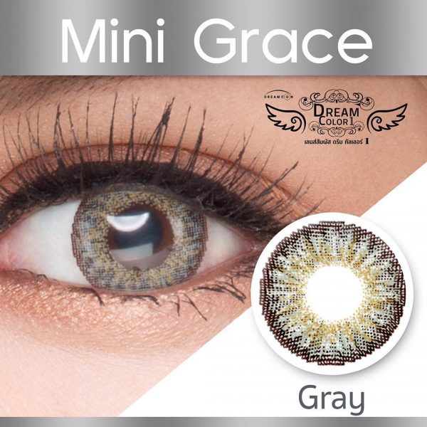 softlens dreamcon mini grace grey