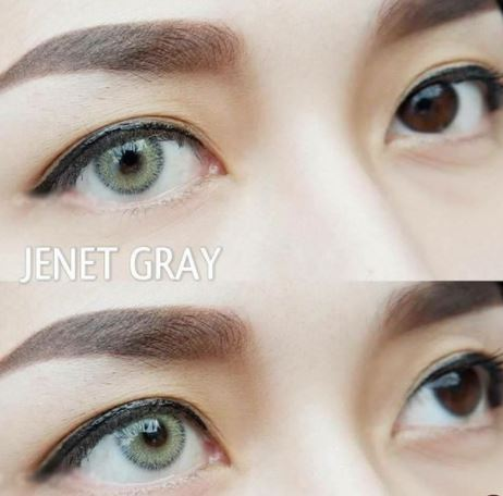 detail softlens sweety jenet grey