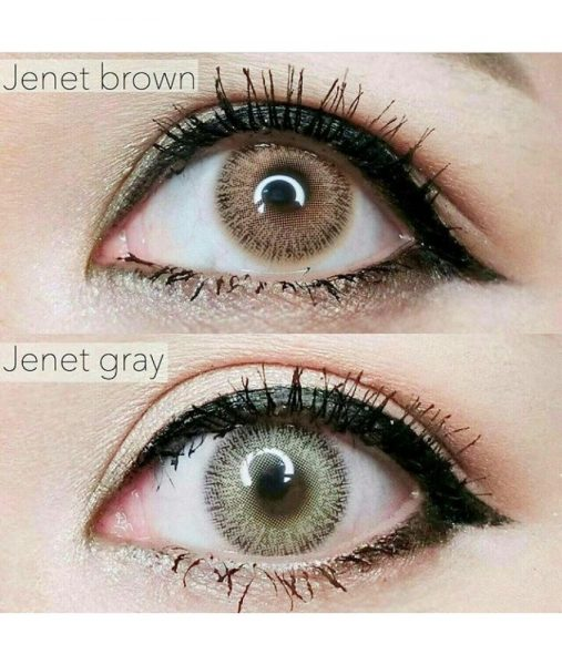 sweety jenet grey n brown
