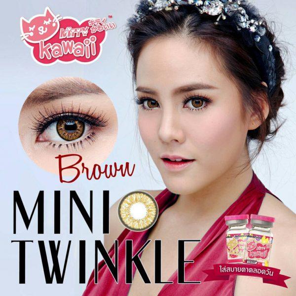 mini twinkle brown 1