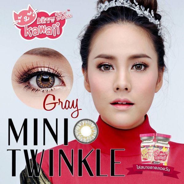 mini twinkle grey 1