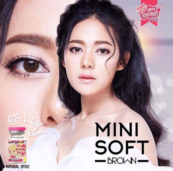 mini soft brown 2