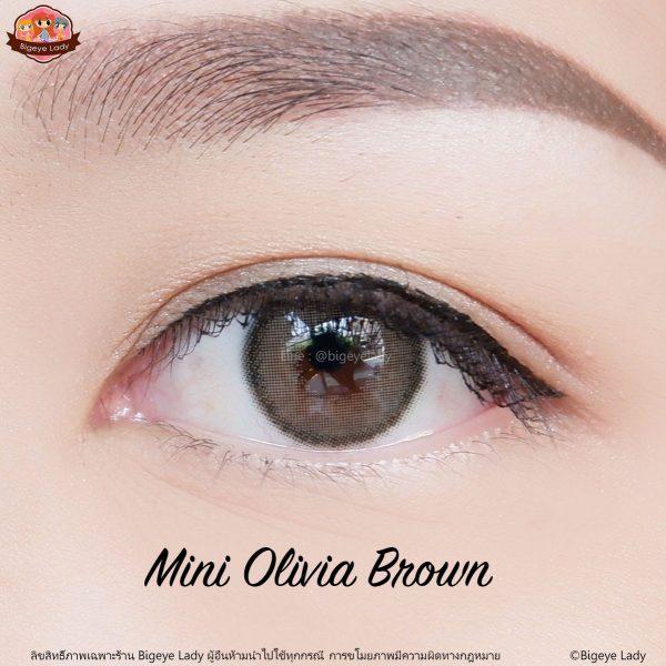 softlens mini olivia brown