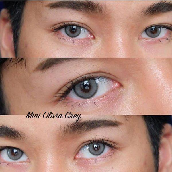 mini olivia grey 1 aa