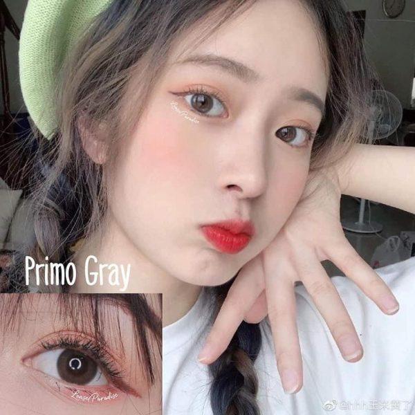 mini primo grey